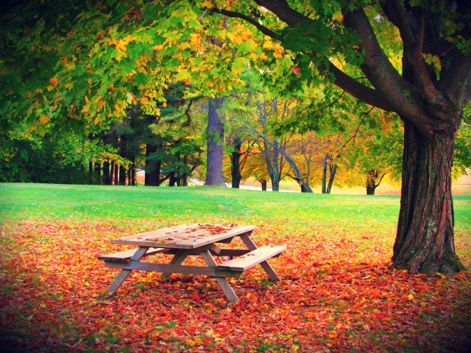 AutumnDrive3