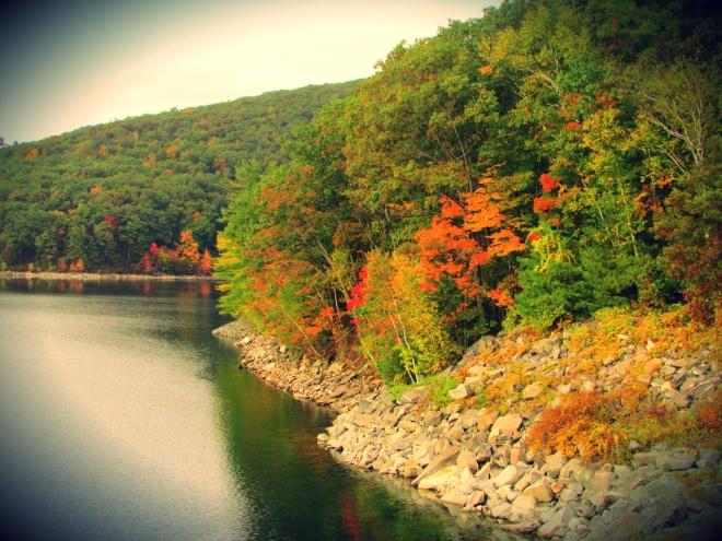 AutumnDrive6