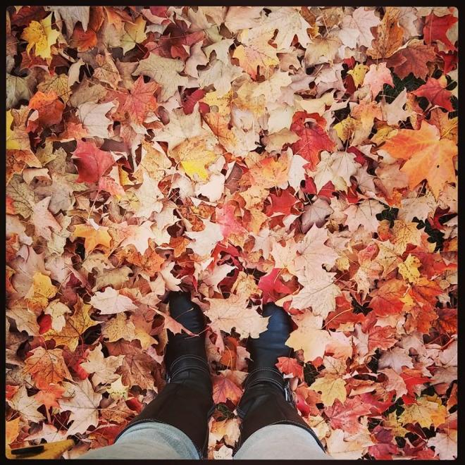 October2014InANutshell