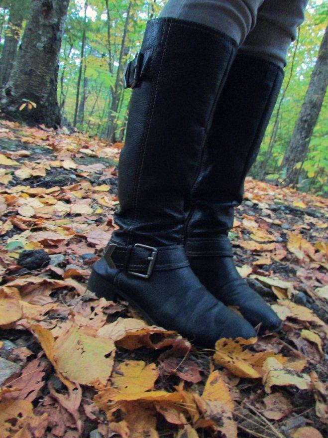AutumnShade20151