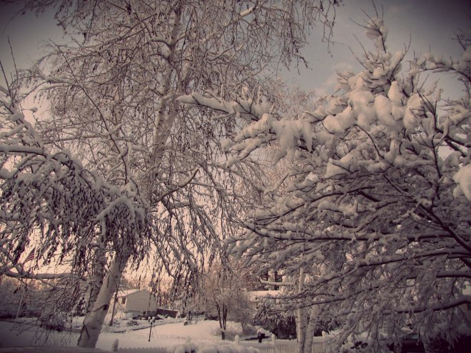 February2016Storm03